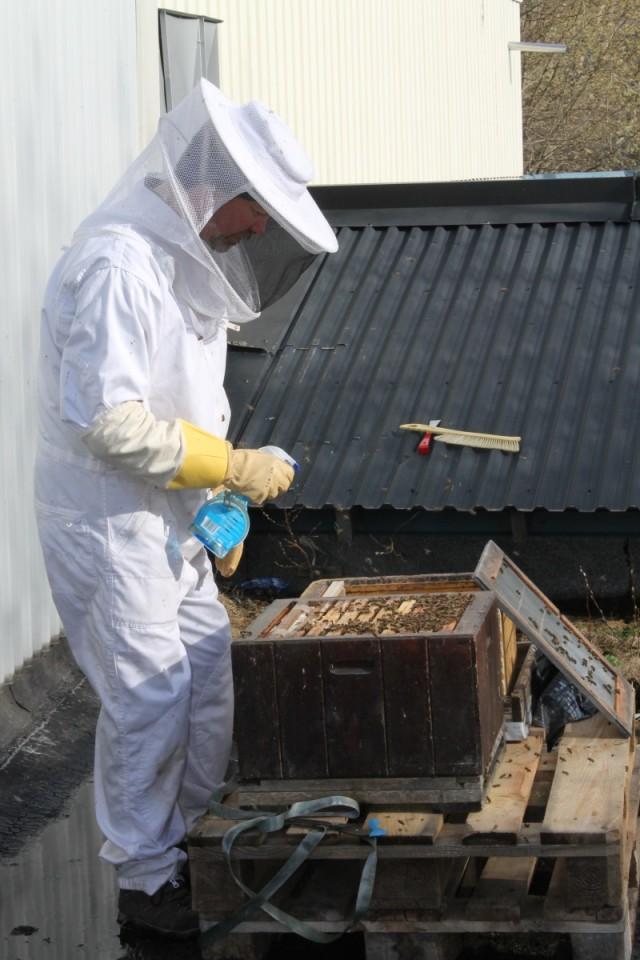 Erik spruter litt vann på biene for å roe dem ned.